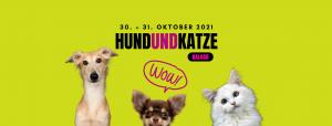 Hund und Katze Niederrhein